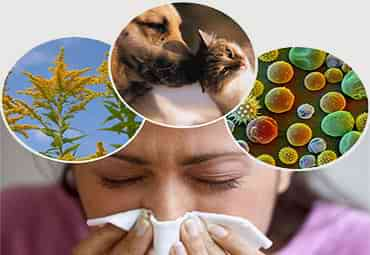 allergy doctor and immunology specialists in Brooklyn