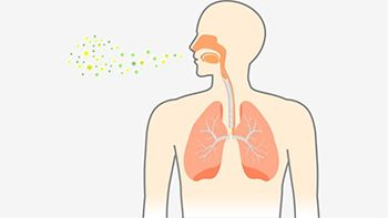 Pneumonia Treatment - Best Internal Medicine Doctors in Brooklyn NYC